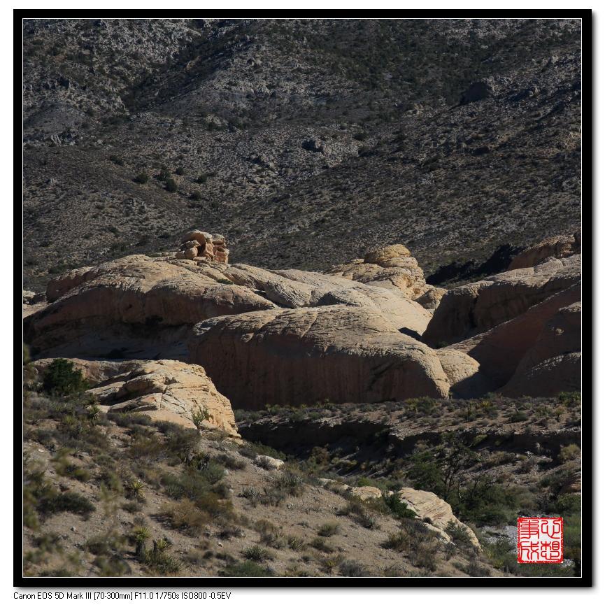 【心想事成】Red Rock Canyon 红石峡谷之旅_图1-11