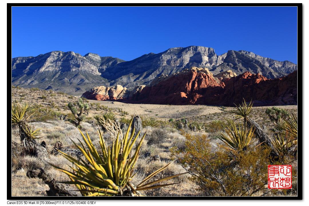 【心想事成】Red Rock Canyon 红石峡谷之旅_图1-16
