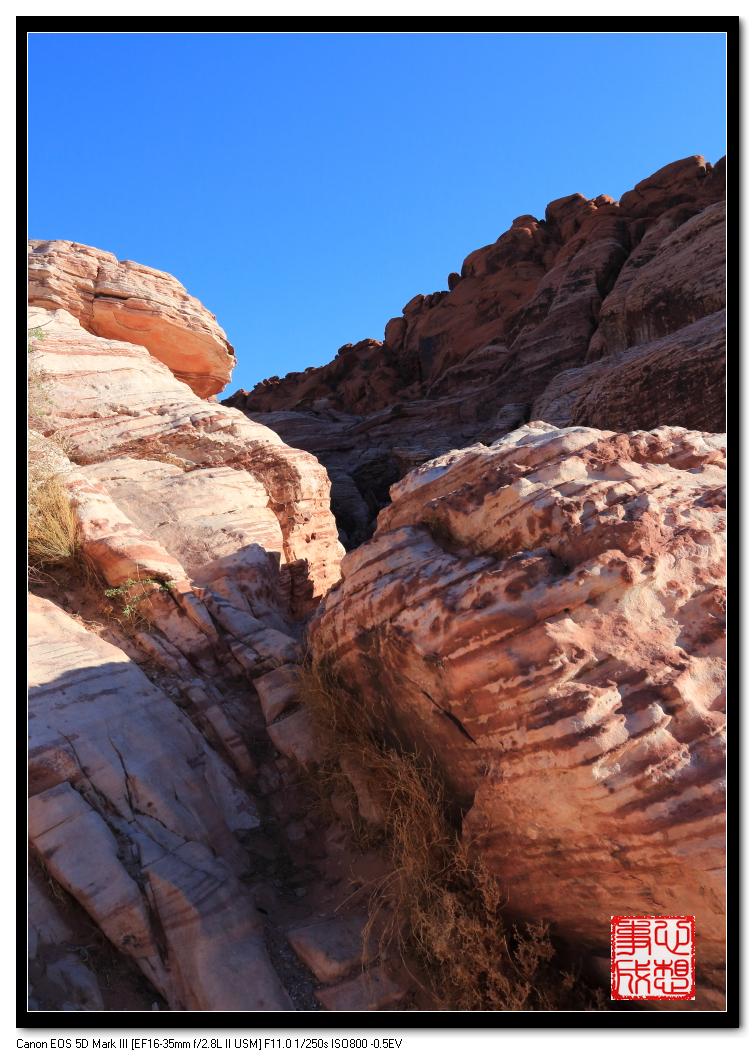 【心想事成】Red Rock Canyon 红石峡谷之旅_图1-14