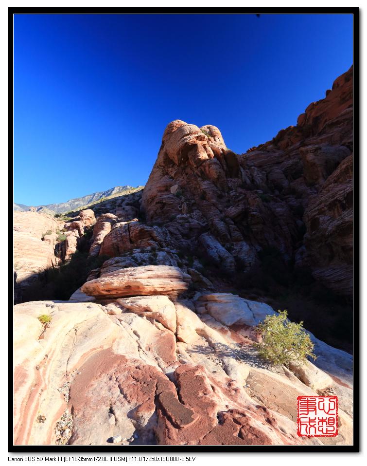 【心想事成】Red Rock Canyon 红石峡谷之旅_图1-17