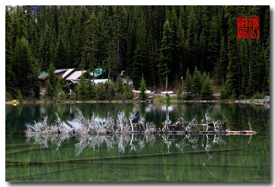 《原创摄影》:湖光山色落基行 - Lake O'Hara_图1-3