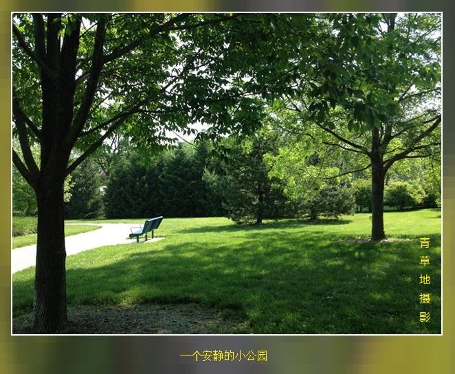 公园见闻_图1-1