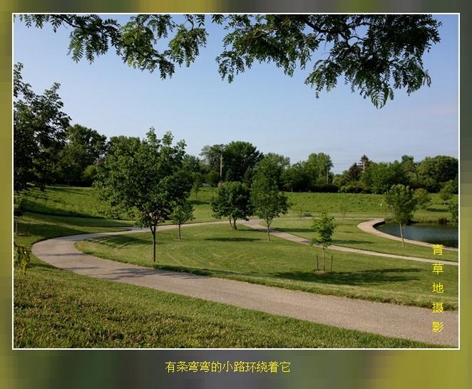 公园见闻_图1-2
