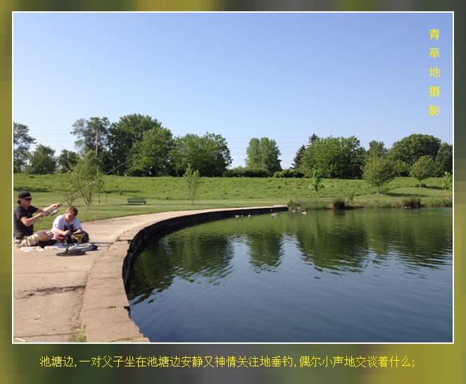 公园见闻_图1-5