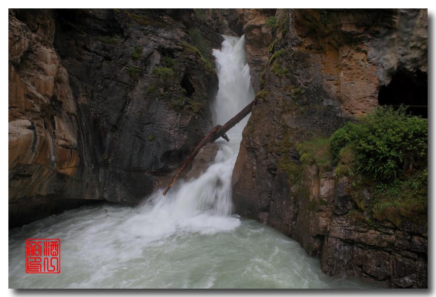 《原创摄影》:湖光山色落基行 - Johnston 峡谷_图1-4