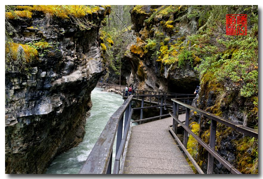 《原创摄影》:湖光山色落基行 - Johnston 峡谷_图1-9