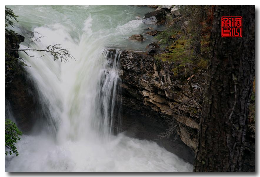 《原创摄影》:湖光山色落基行 - Johnston 峡谷_图1-13