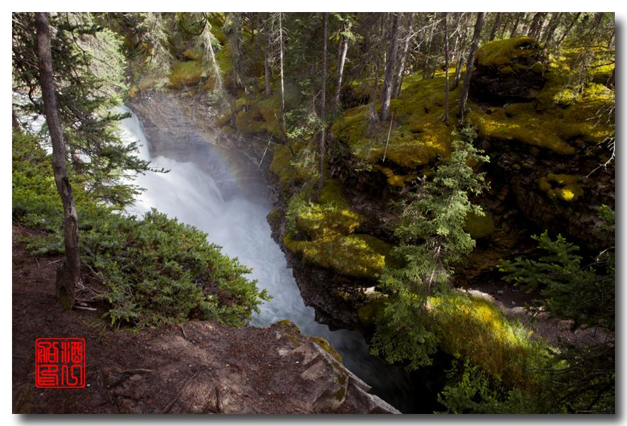 《原创摄影》:湖光山色落基行 - Johnston 峡谷_图1-14