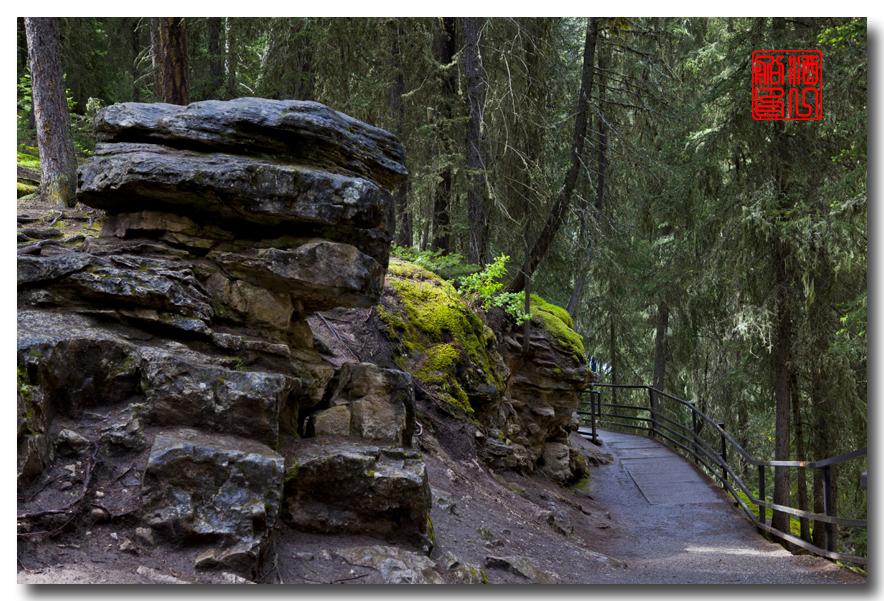 《原创摄影》:湖光山色落基行 - Johnston 峡谷_图1-19