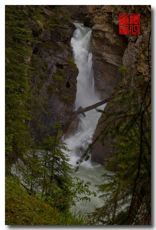 《原创摄影》:湖光山色落基行 - Johnston 峡谷_图1-20