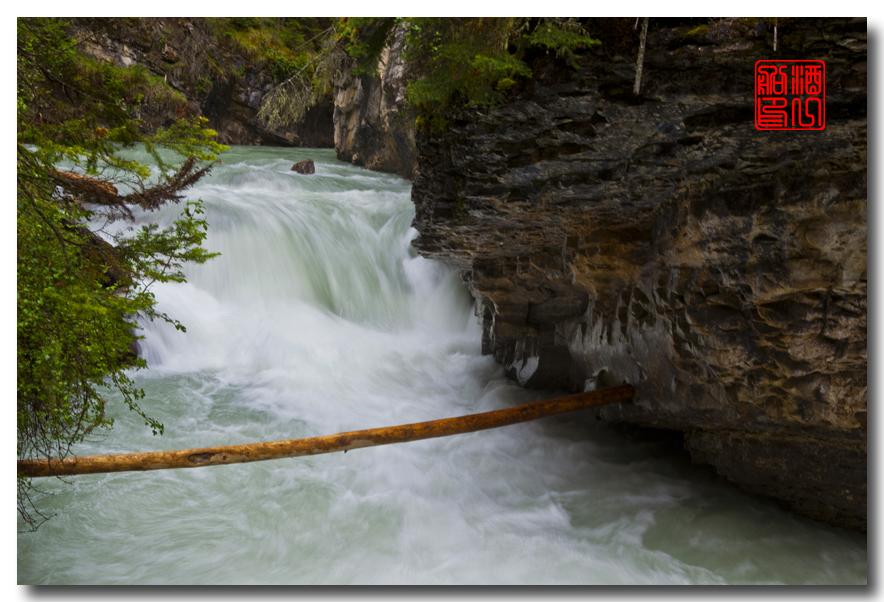 《原创摄影》:湖光山色落基行 - Johnston 峡谷_图1-26