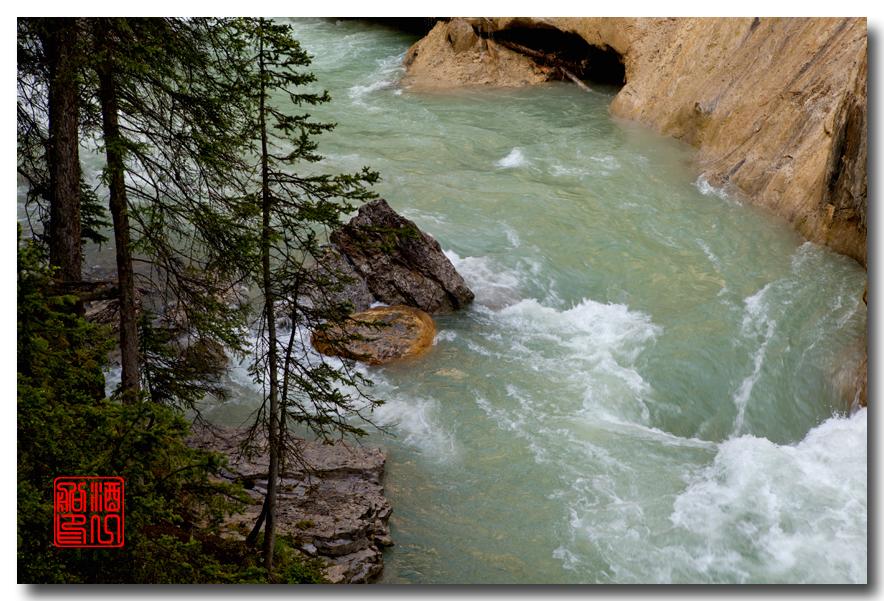 《原创摄影》:湖光山色落基行 - Johnston 峡谷_图1-30