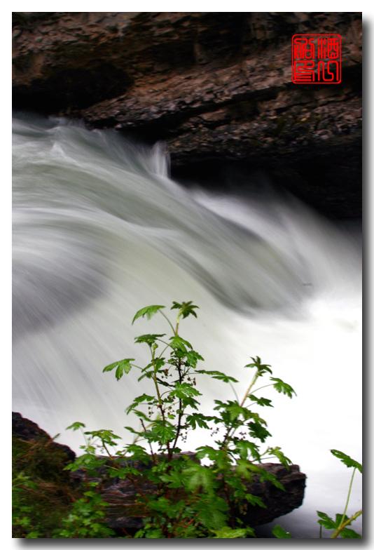 《原创摄影》:湖光山色落基行 - Johnston 峡谷_图1-12