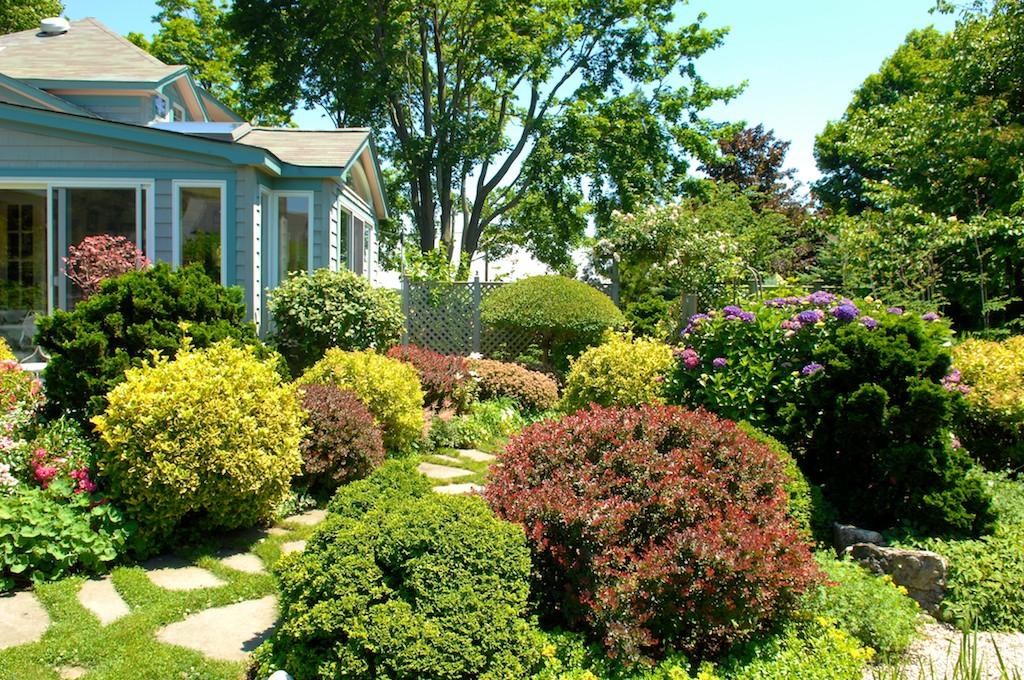 花園開放日Garden Day--一窺主人精心打造的世外桃園(一)_图1-5