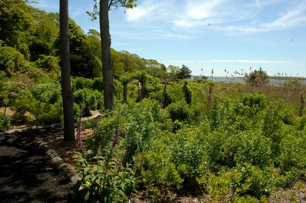 美國花園開放日(之二)-參觀長島北福克Nassau Point私家大院_图1-13