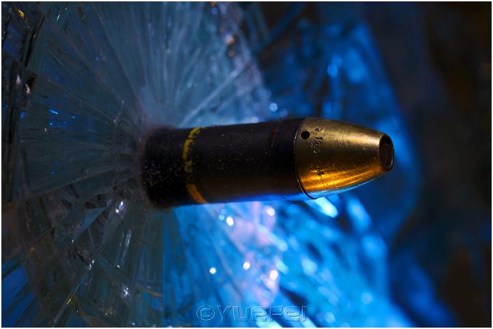 【相机人生】鲜为人知的故事 — 玻璃艺术展中的趣事(331)_图1-40