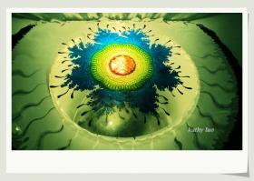 【小虫摄影】分享村长的玻璃艺术