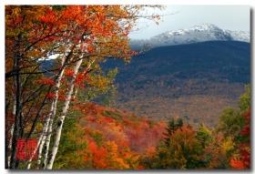 《原创摄影》:红枫白雪映秋冬 - 华盛顿山