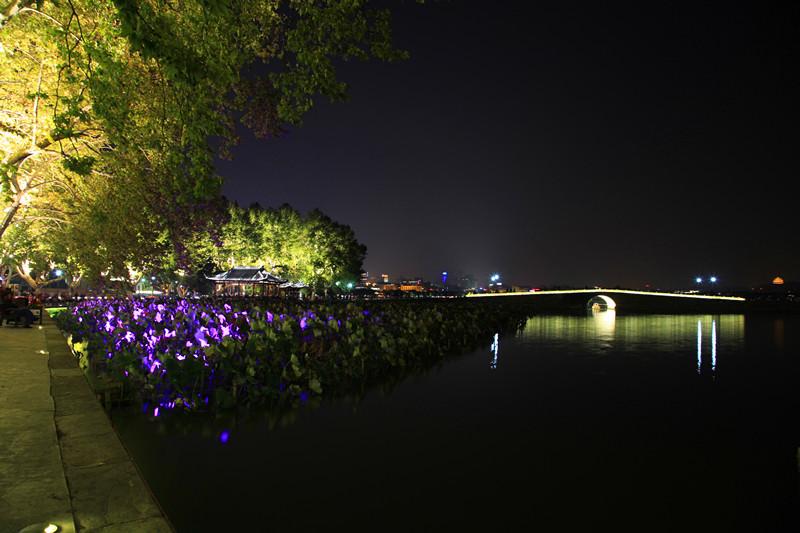 西湖秋夜_图1-15