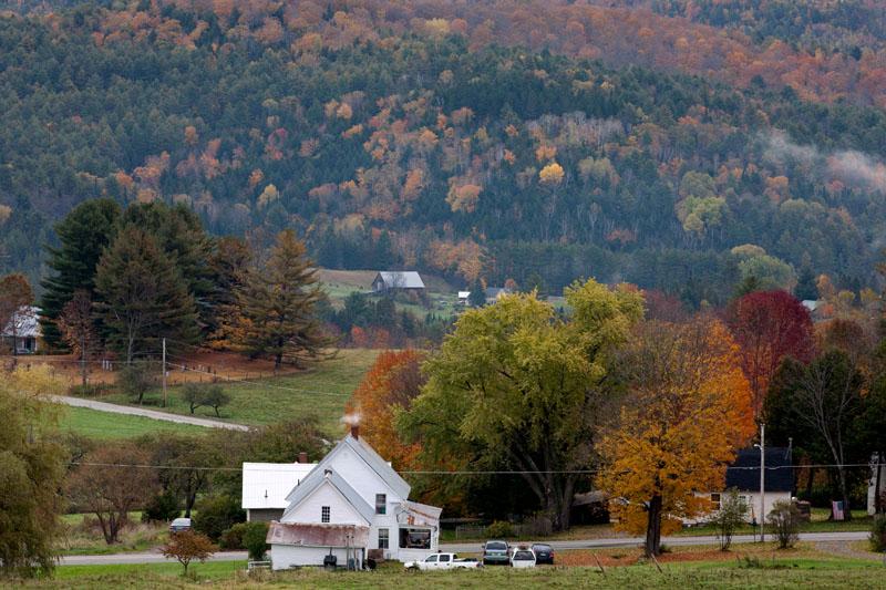 迷人的秋色 - 纽约文摘 - 纽约文摘