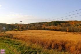 纽约威郡Westchester的秋色