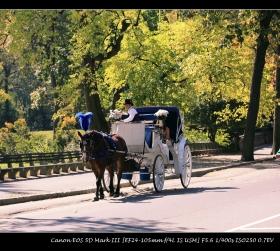 浪漫在中央公园