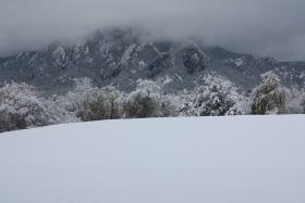 科州初雪 秋去冬来