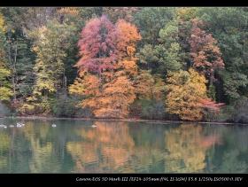 平湖秋景----Bayside NY