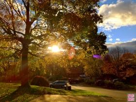 昨日黄昏, 威郡woods小区的浪漫