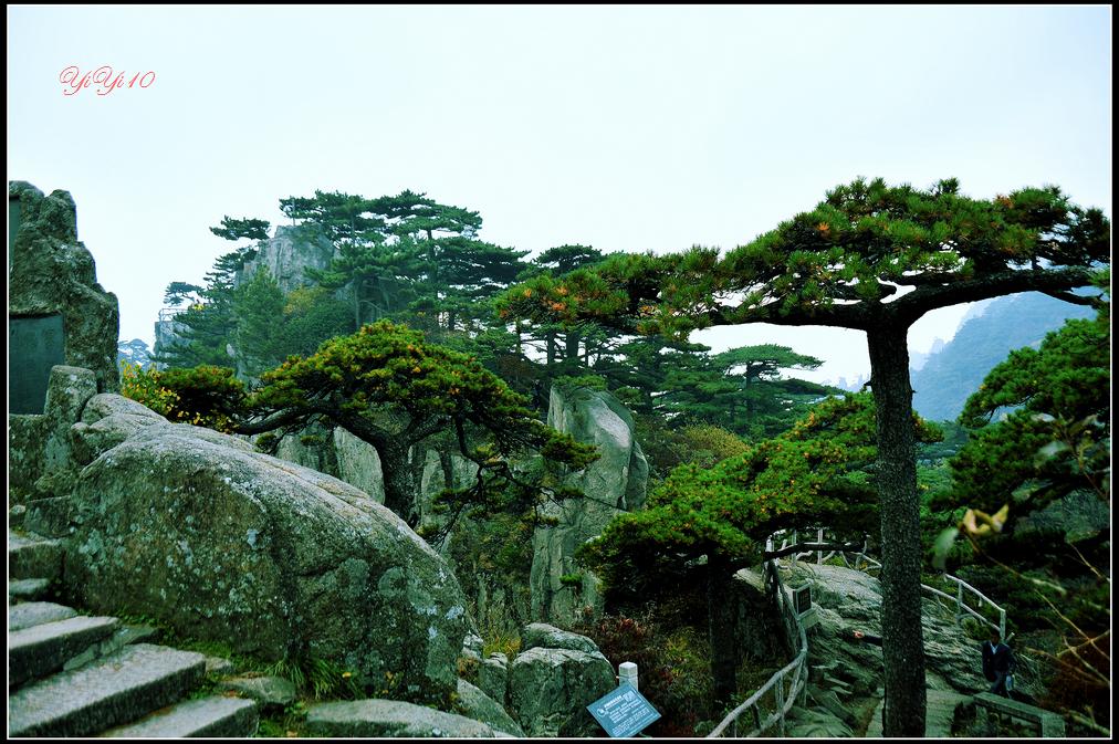 【原創】yiyi10的鏡頭里的黃山(攝影)_图1-12