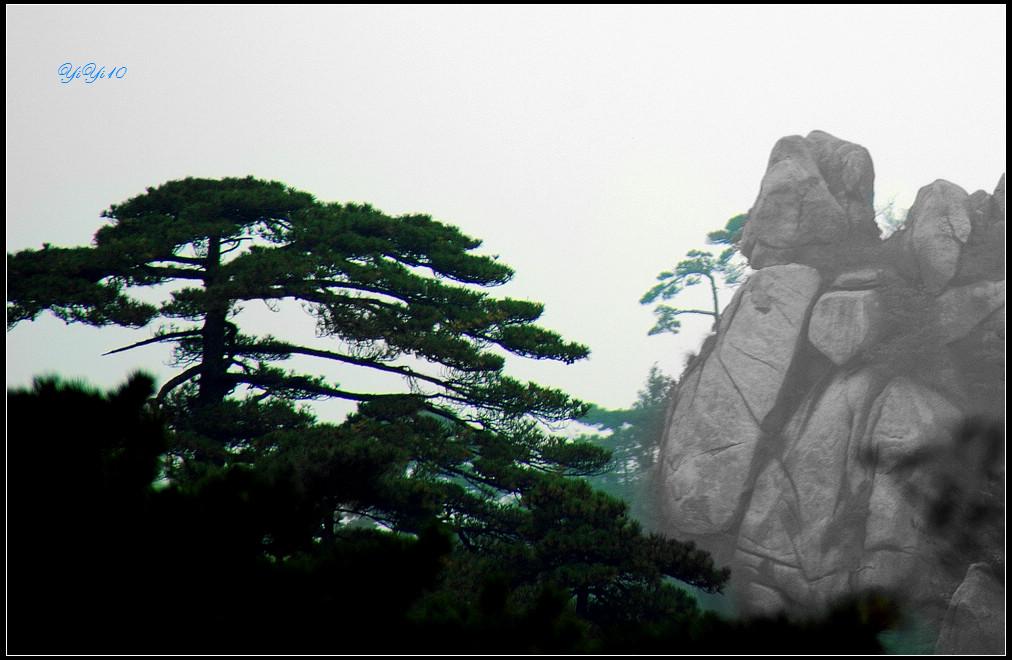 【原創】yiyi10的鏡頭里的黃山(攝影)_图1-6