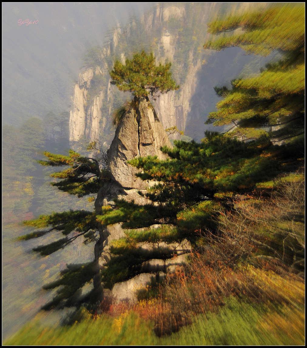 【原創】yiyi10的鏡頭里的黃山(攝影)_图1-7