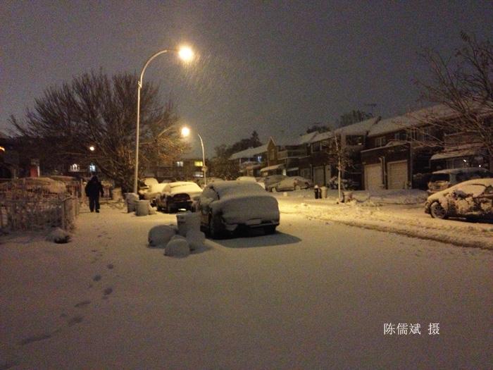 霜上加雪,这场大雪下得真不是时候_图1-8