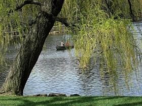 四季里的春天。总是给大自然的生物带来无限