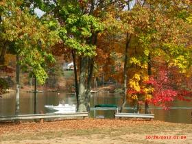 美如油画般的秋景