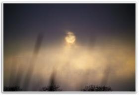 月影. 雾