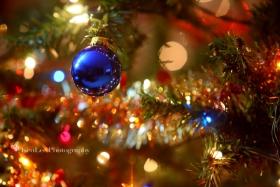 [Ken Lee] 我家的圣诞树