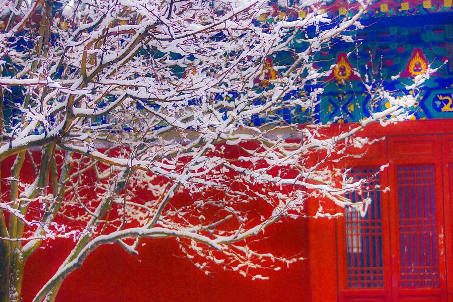 那一场沸沸扬扬的中国雪_图1-16