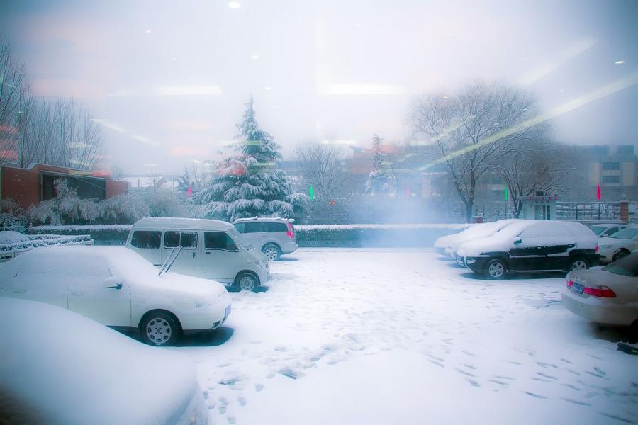 那一场沸沸扬扬的中国雪_图1-17