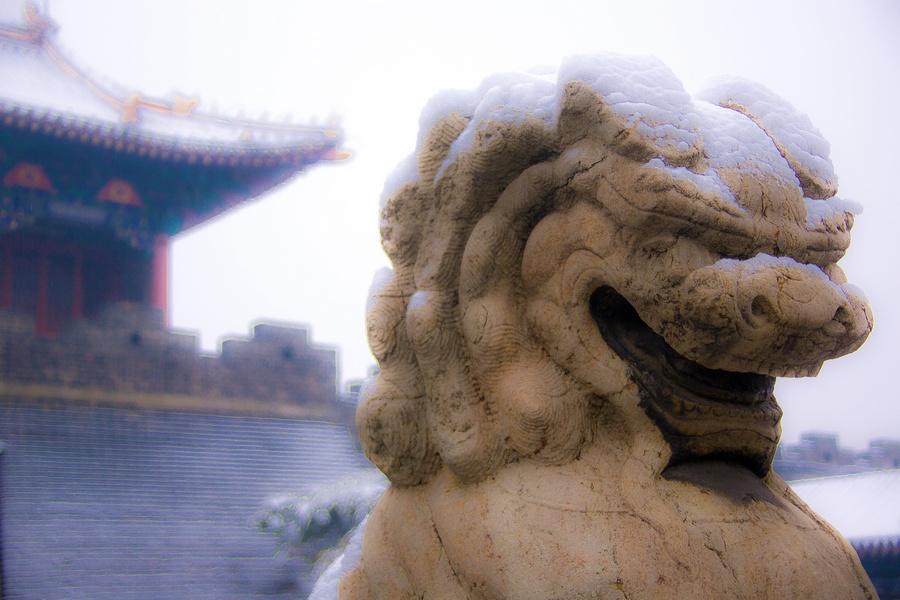 那一场沸沸扬扬的中国雪_图1-19