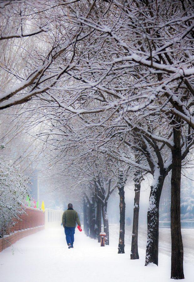 那一场沸沸扬扬的中国雪_图1-20