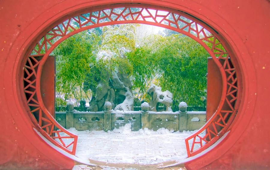 那一场沸沸扬扬的中国雪_图1-23