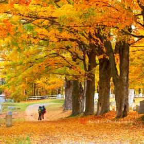 [Ken Lee] 《墓园晚秋》
