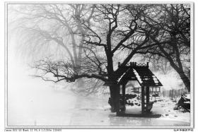 【盲流摄影】今天中央公园的雾