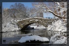 中央公园---雪景 2013