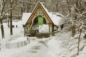 暴风大雪,让中央公园舖上一层