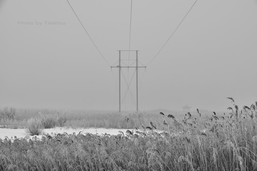 雪地雾影[原创]_图1-8