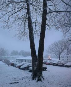 【邝幸】三月的雪