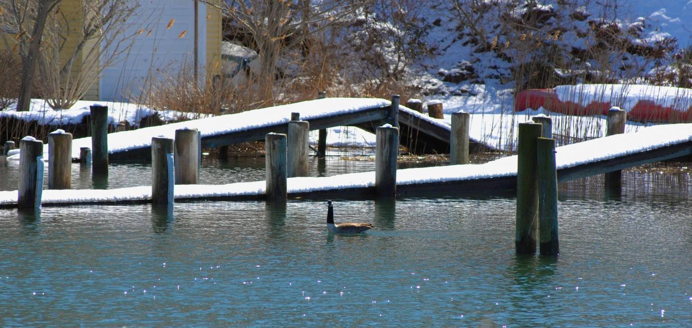【圖博】春雪後的長島北福克North Fork_图1-5