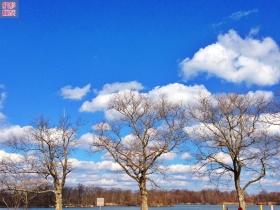 爱疯一下今日的灿烂云天